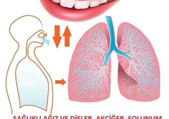 Ağız ve Diş Sağlığınızı Korumak, Sağlıklı Akciğerlere Sahip Olmanızı da Sağlayabilir.